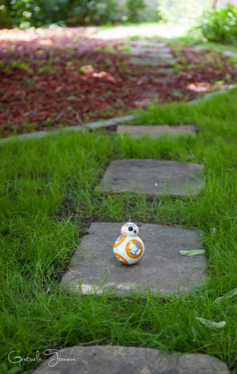 BB-8-(1)