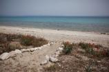 Greece,-Kassandra(3)